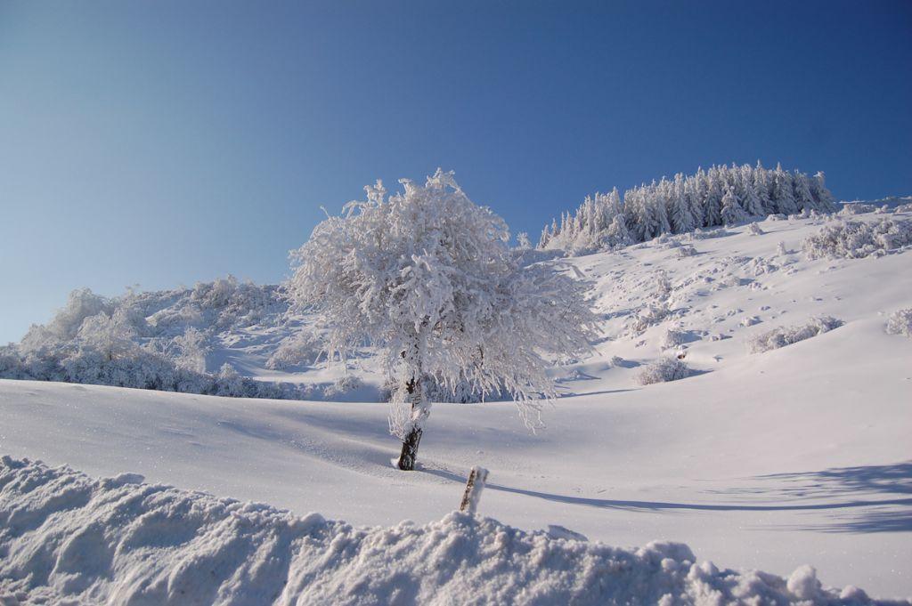 Fotogallery Eremo - Monte Carpegna